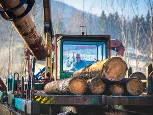 Lubricants for Wood products industry featured
